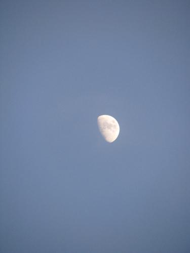 the original moon shot
